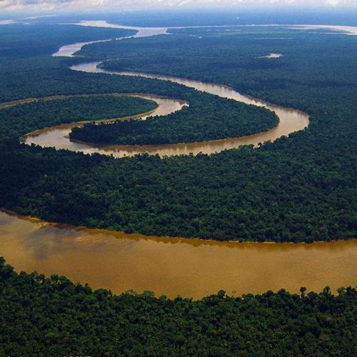 5 DE SETEMBRO É CELEBRADO O DIA DA AMAZÔNIA